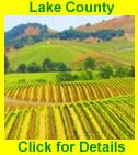 Monterey & Carmel Tours Logo